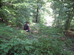 Ecologizare Drumul Vechi